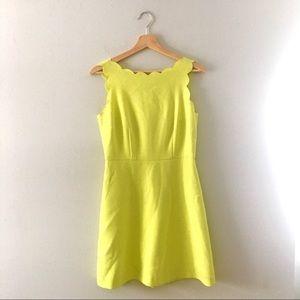 Dresses & Skirts - Scalloped mini sheath dress in YELLOW